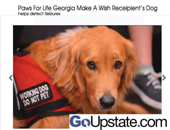 Paws for Life Georgia Make a Wish Receipient
