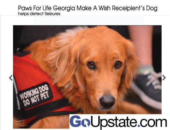Paws for Life Georgia Make a Wish Receipient
