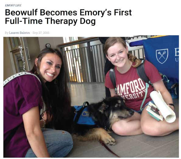 Beawulf Rescue Dog from Animals Deserve Better becomes Emorys first Full Time Therapy Dog