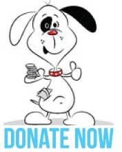 Donate to Animals Deserve Better | Paws for Life