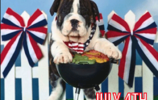 Paws for Life Usa Service Dog Training Shares Tips on Dog Safety for July 4th