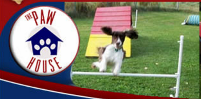 adb-pet-travel-logo-the-dog-house