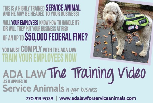 ADA LAW- The Training Video