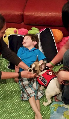 Brody meets his service dog thru Animals Deserve Better-Paws for Life Georgia