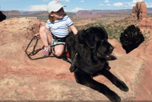 paws for life loves this story about a Newfondland who helps an Autistic child