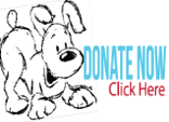 Donate to Animals Deserve Better | Paws for Life Atlanta Georgia