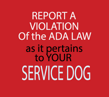 Report an ADA LAW Violation via ADAlaw-thetrainingvideo.com