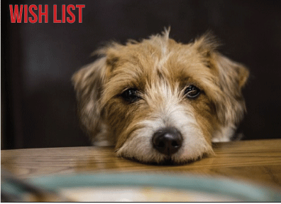 Paws for Life WIsh List