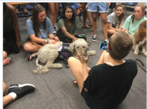 Paws for LIfe Thearpy Dogs go to HIgh School