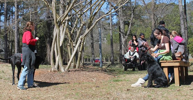 Paws for Life Service Dog Training out in the Park