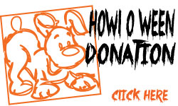 Donate Now to Paws for Life USA