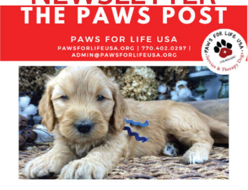 The Paws Post Vol 1. March 2021